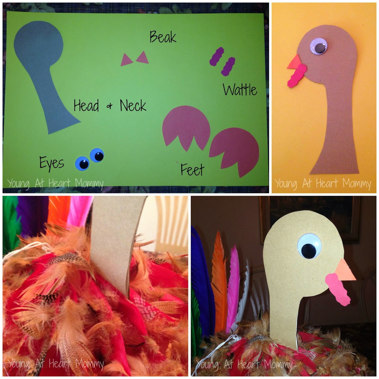 Paper honeycomb thanksgiving turkey craft young at heart