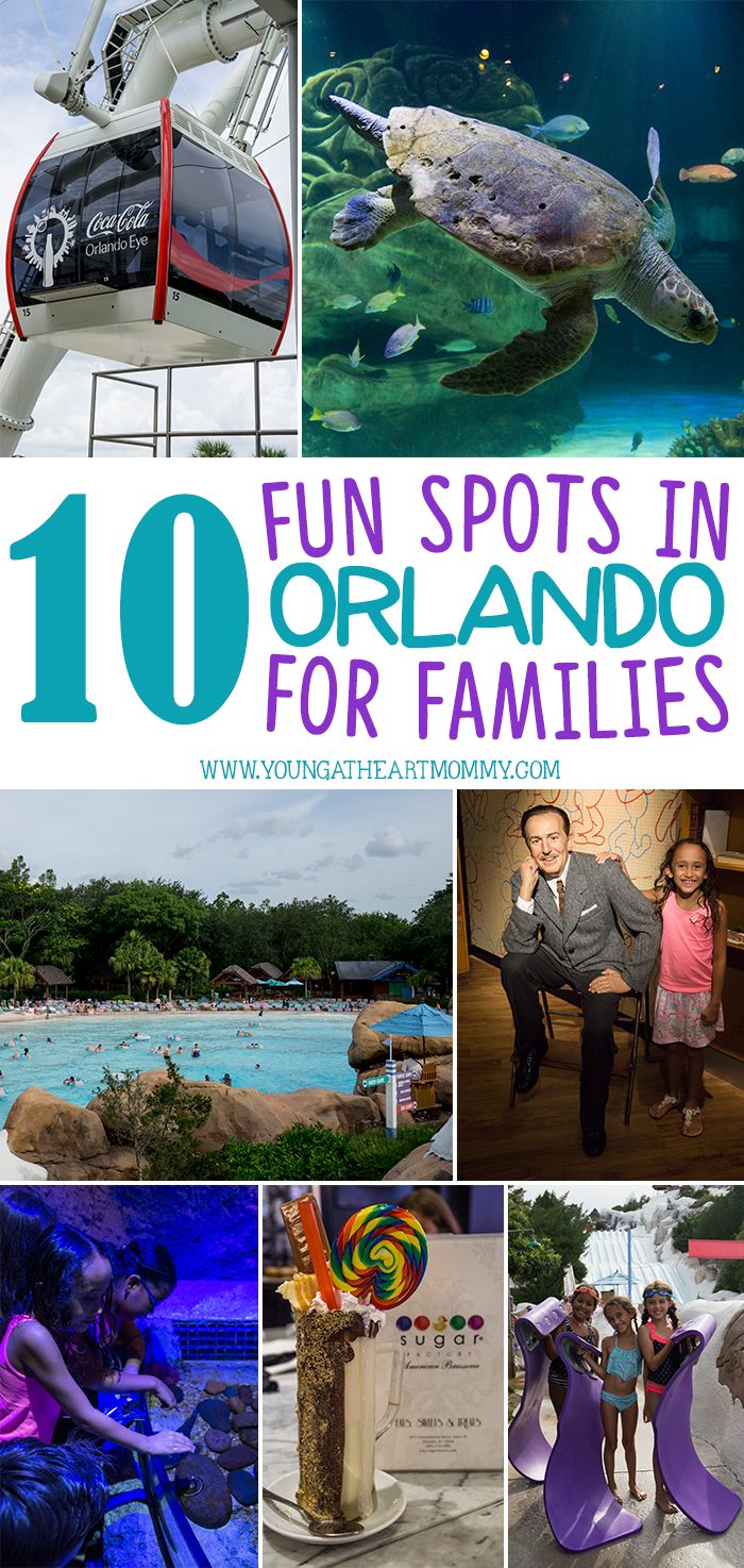 10 Fun Spots In Orlando For Families To Visit This Summer