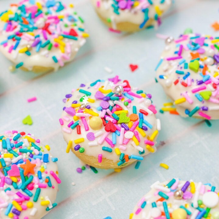Mini Funetti Donuts With Sprinkles